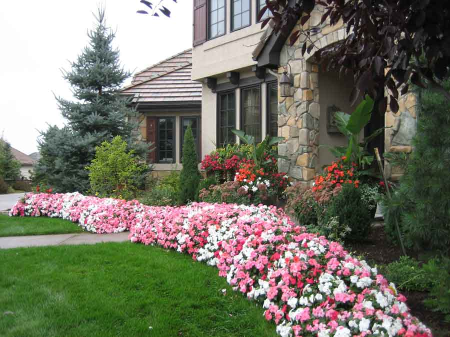Annuals by Stonegate Gardens of Denver, Colorado