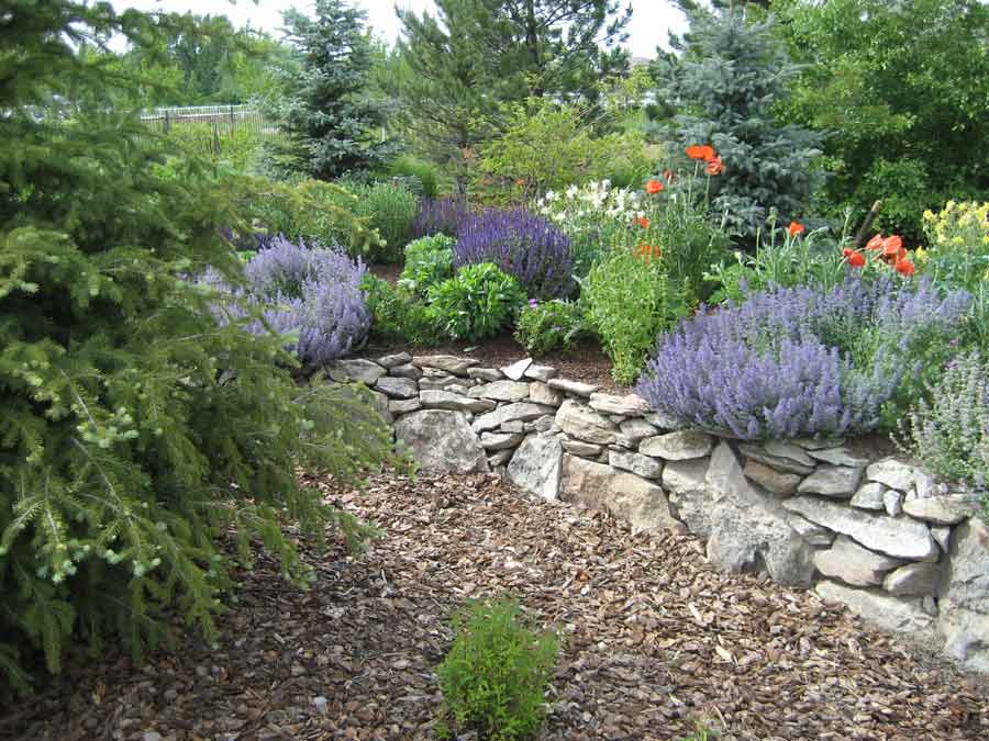 Denver Irrigation Design Installation Spring Activation